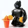 Plataforma abierta humanoide ROBOTIS OP (DARwIn)
